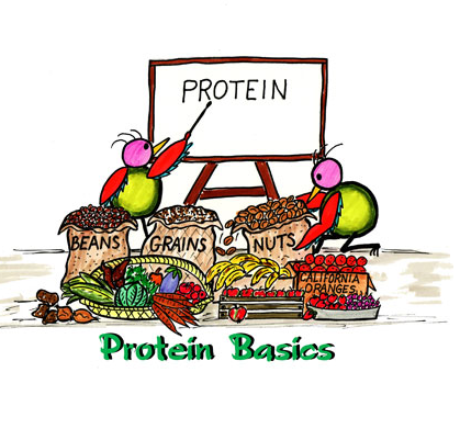 Protein deficiency and its cure