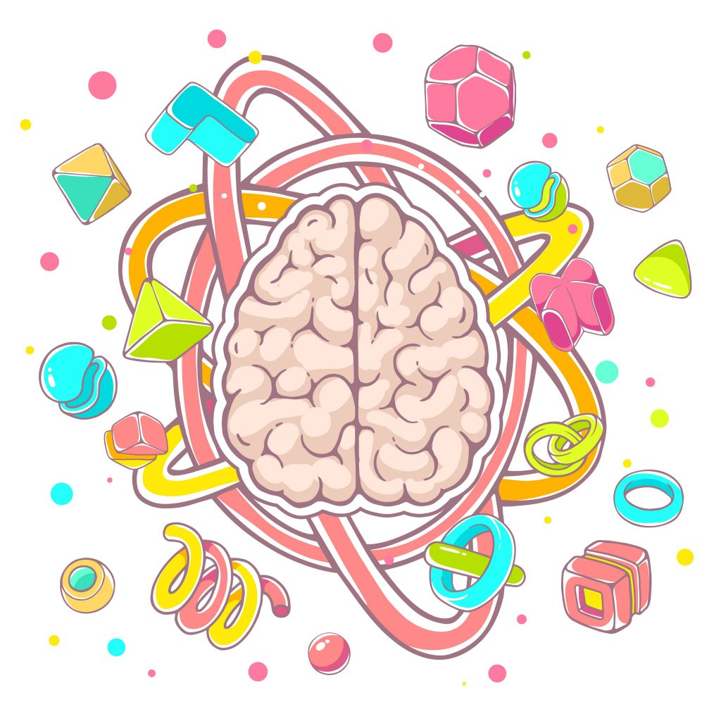 Vector colorful illustration of model of human brain top view on white background. Hand draw line art design for web, site, advertising, banner, poster, board, brochure and print.